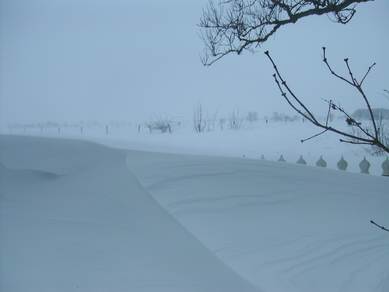 Snöstorm på Öland