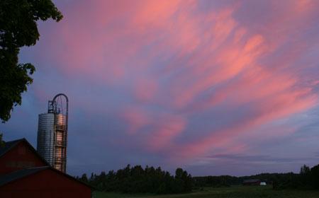 Trevlig kvällsnyhet! Arla höjer vårt mjölkpris med 17,4 öre, även ekotillägget blev högre! Hoppas det håller i sig och fortsätter uppåt!